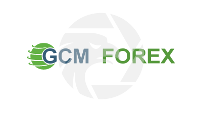 Gcm forex ceo of google self-taught programmes vs cs-educated programmers investment