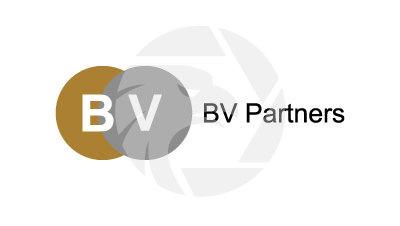 BV Partners