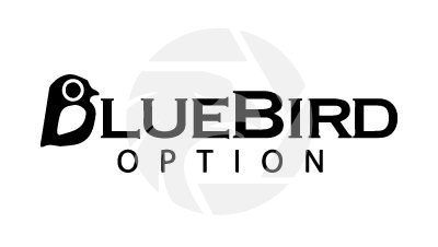 Bluebird Options