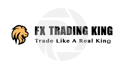FX Trading King