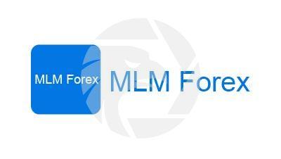 MLM Forex