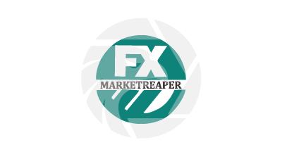 FX Markets