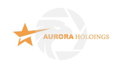 AURORA HOLDINGS