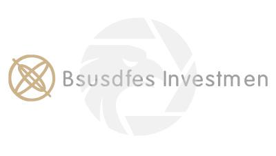 Bsusdfes Investmen