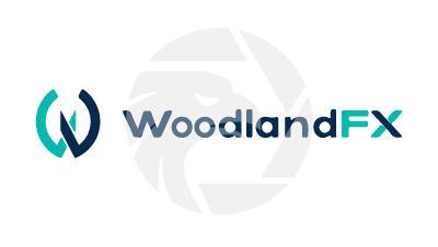 Woodland Forex